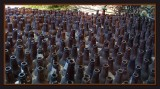 6000 Bottles