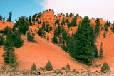 Red Canyon 1w.jpg
