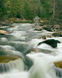 Merced River-April 1w.jpg