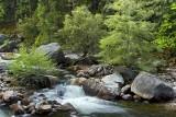 Merced River 0506072w.jpg