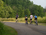 Cyclists In the State Park.