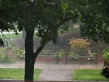 Needed Down Pour