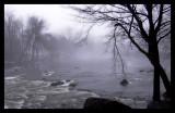 More Fog...