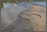 Le Coeur du lac