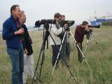 2006 Kleine spotvogel / Booted Warbler