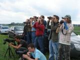 2007 Vale gier / Griffon Vulture