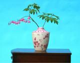 aa Bleeding heart in pink vase 01.jpg