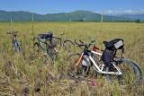 Harvest Mountain Bikes