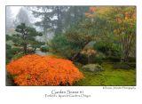 Garden Scene 1.jpg