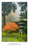 Garden Scene 4.jpg