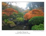Garden Scene 6.jpg