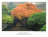 Garden Scene 7.jpg