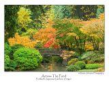 Across The Pond.jpg