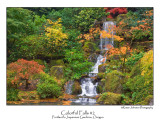 Colorful Falls.jpg  (Up To 30 x 45)