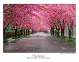 Pink Avenue.jpg  (Up To 30 x 45)