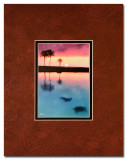 Turtles swimming at sunset (matted print)