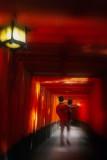 Fushimi-Inari torii