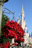 Walt Disney World December 2006