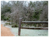Ice coats4, Austin