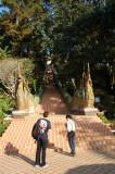 Steps to Wat Phrathat