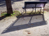Long shadows time