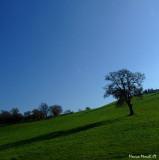 Tuscany hill