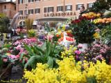 Roma - Campo de Fiori