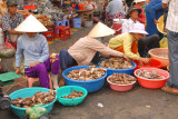 Seafood vendors in market