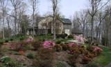 DSCF3046 I Love Spring!