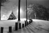 Snow at Island Park