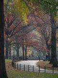 Autumn Central Park NYC Manhattan New York 2