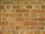 Now this I found fascinating, same type of brick that was used for my building.  COPYRIGHT PAT MORGAN 2007
