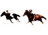horse_series