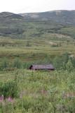Denali North Face