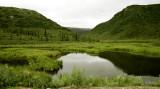 Denali Pond