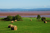 Farming in the view of fundy