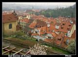 Red Rooves of Prague.jpg