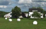 The Marshmallow Farm