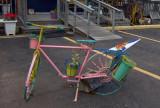 A Pugwash Bike