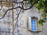 Window And Branch, Les Baux