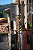 Peek-A-Boo, And Welcome To Biot