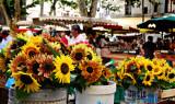 Sunday Market, Aix
