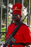 Guard at the Senegal Presidential Palace