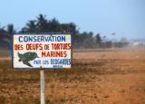 Conservation des oeufs de tortues marines, Grand Popo, Benin
