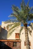 Palm tree, Nizwa souq