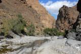 Water in Wadi Bani Awf after December rains
