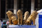 Lion fountain, Place de l'Independence