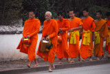 The monks of Luang Prabang rise early each day to collect alms at 6 am