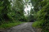 Most roads in Bali are good, except this one between Luwus and Petang