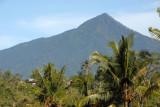 Gunung Batukaru (2276m) Bali